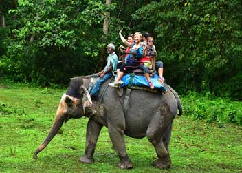 Elephant-Safari-Tour-Nepal