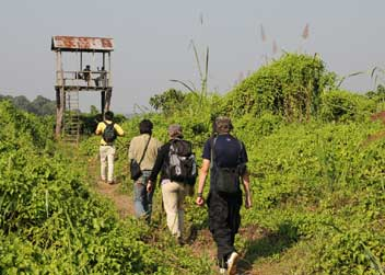 Jungle-Walk-Tour-Chitwan-Nepal