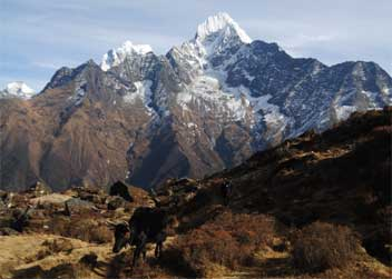 Syangboche-Everest-Trek-Nepal