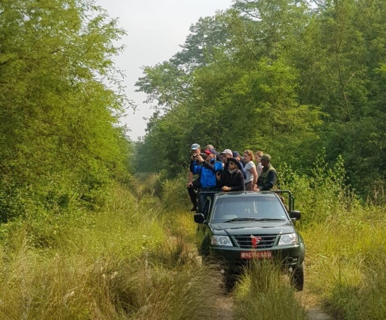 Full day jungle activities at Chitwan National Park (B, L, D)